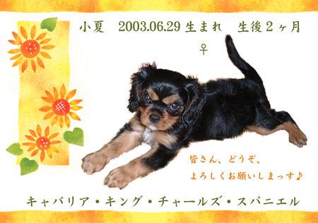 20030824-4