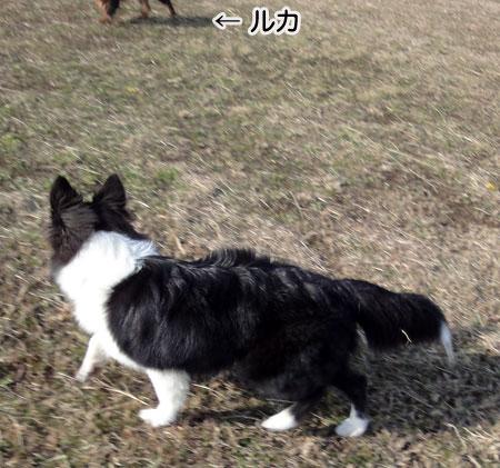 20101212-21