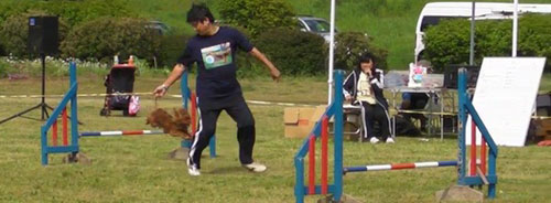 20110504-sena-jp2