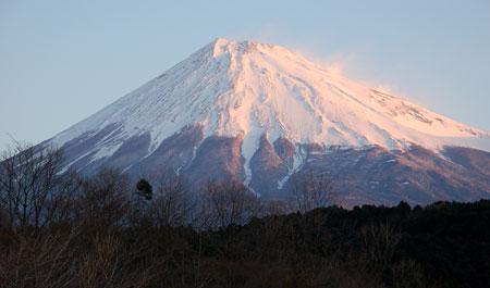 JFA SKYDOG CHAMPIONSHIPS 静岡富士