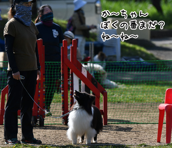 OPDES秋ケ瀬